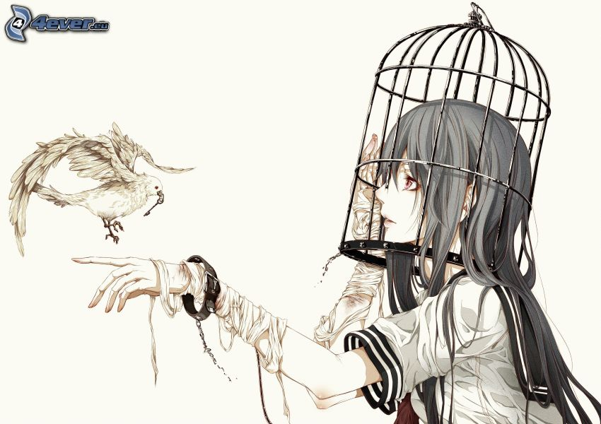 chica anime, paloma, jaula, clave