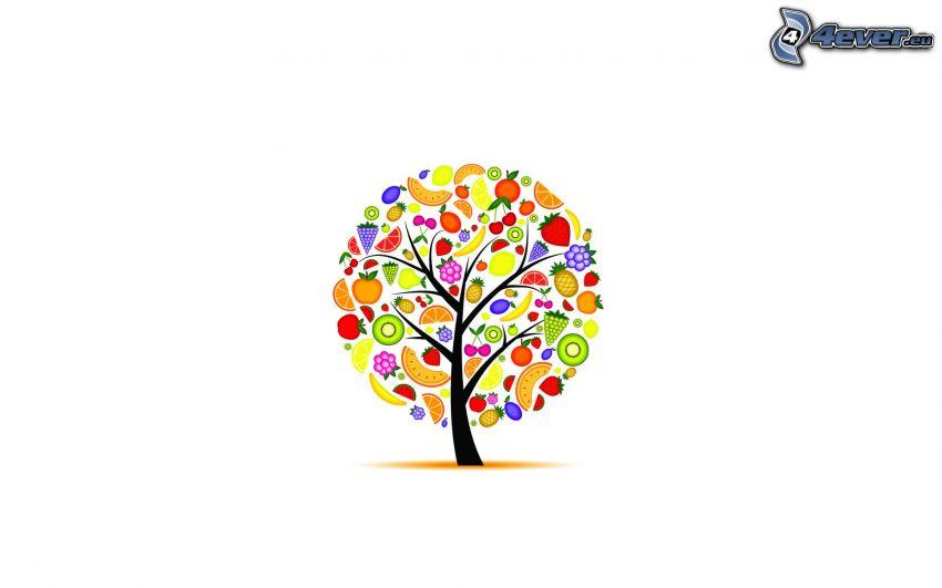 árbol pintado, fruta