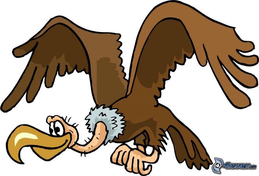 buitre, pájaro de dibujos animados