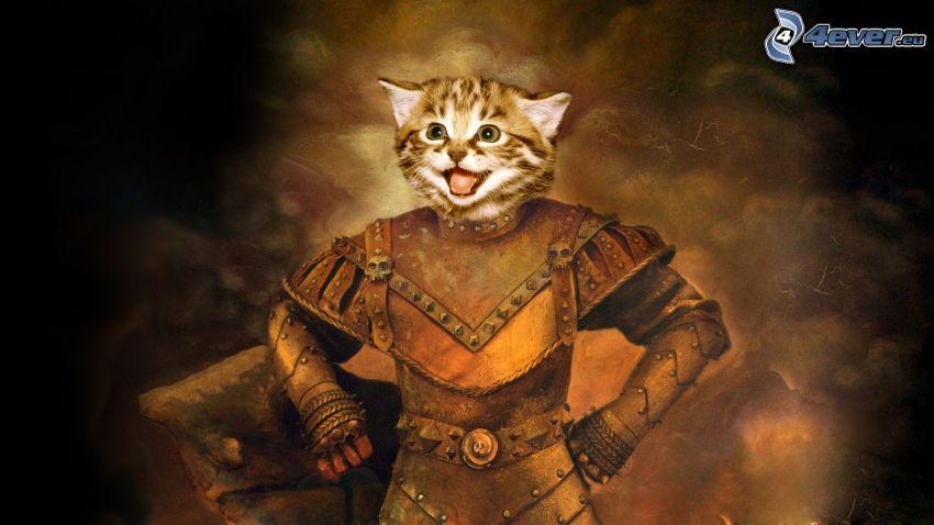 cabeza de felino, guerrero