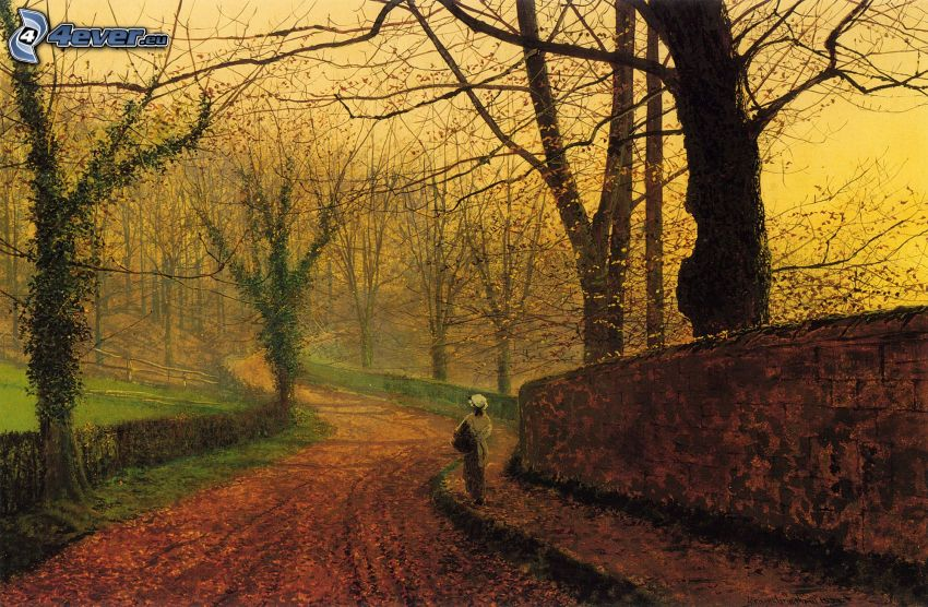 camino bajo árboles en otoño, arboleda, niño