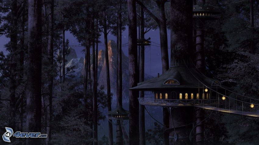casa en el árbol, bosque