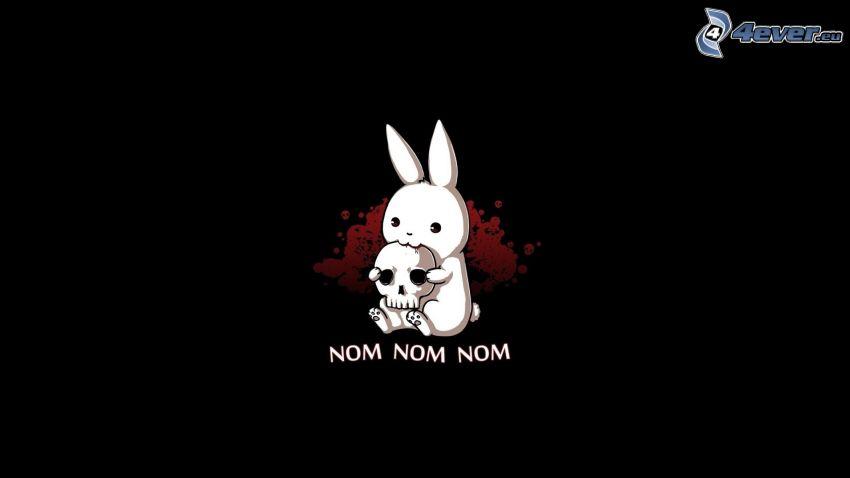 conejo de dibujos animados, cráneo