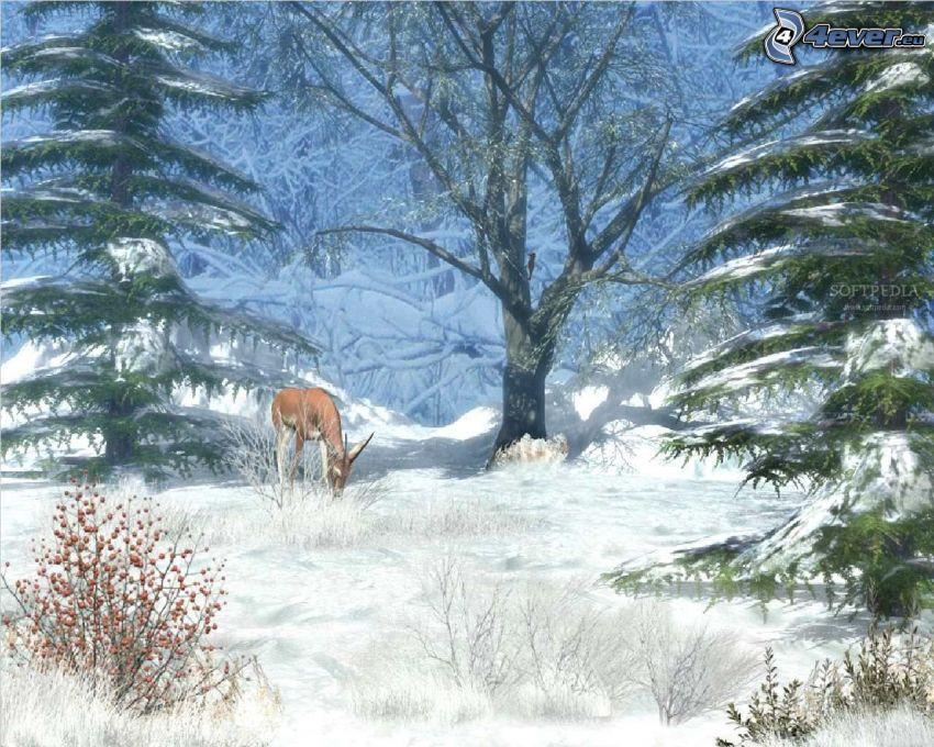 corza, bosque, nieve