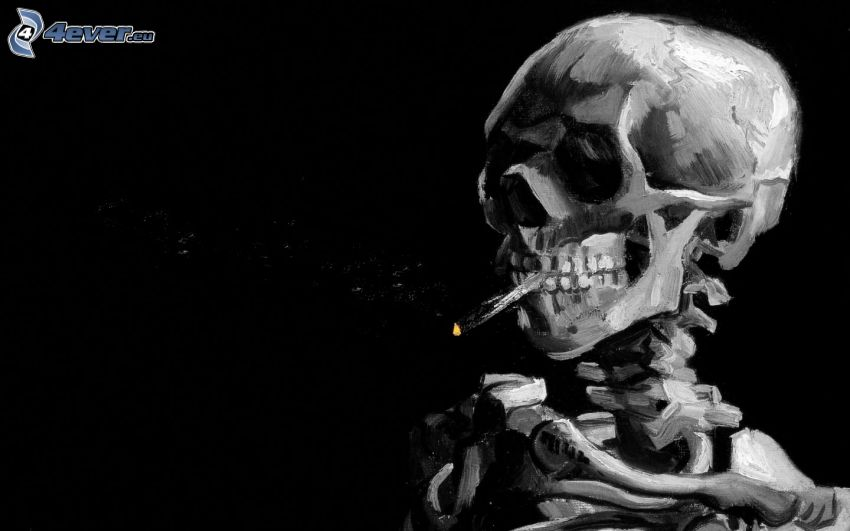 cráneo, esqueleto, cigarrillo, fumar