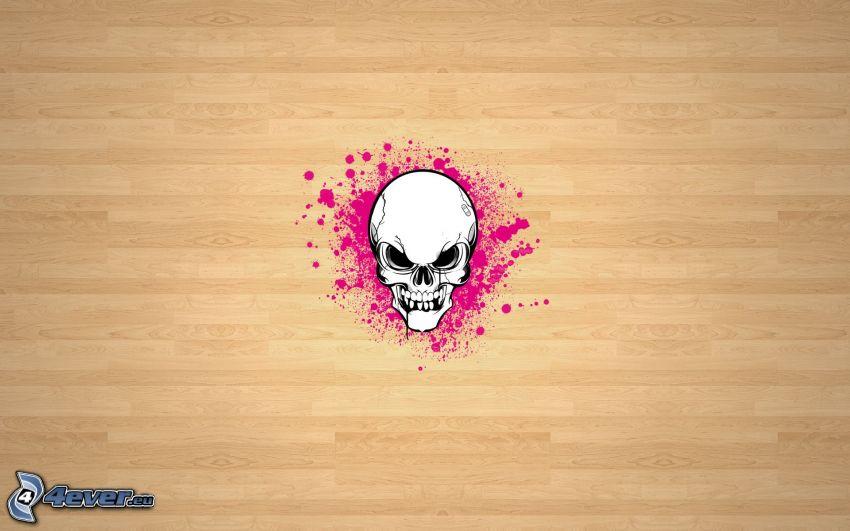cráneo, tabla de entarimado