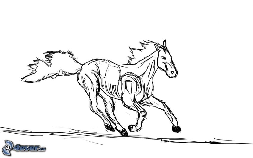 caricatura de caballo