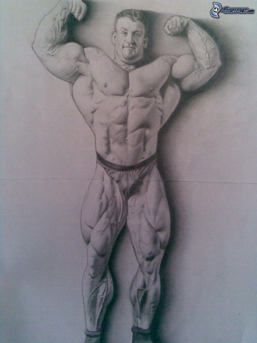 Dorian Yates, hombre musculoso, musculatura