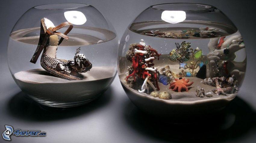 acuario, pez, Botas altas