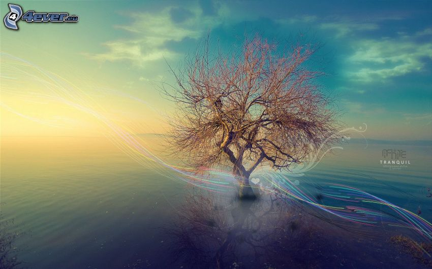 árbol solitario, abstracto