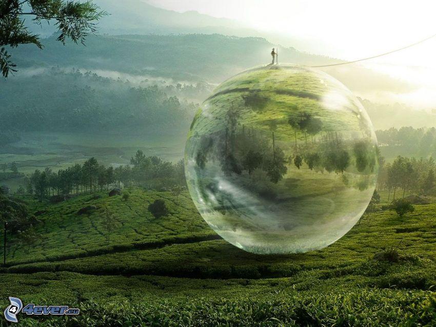 bola, hombre, campo, árboles, colina, niebla baja