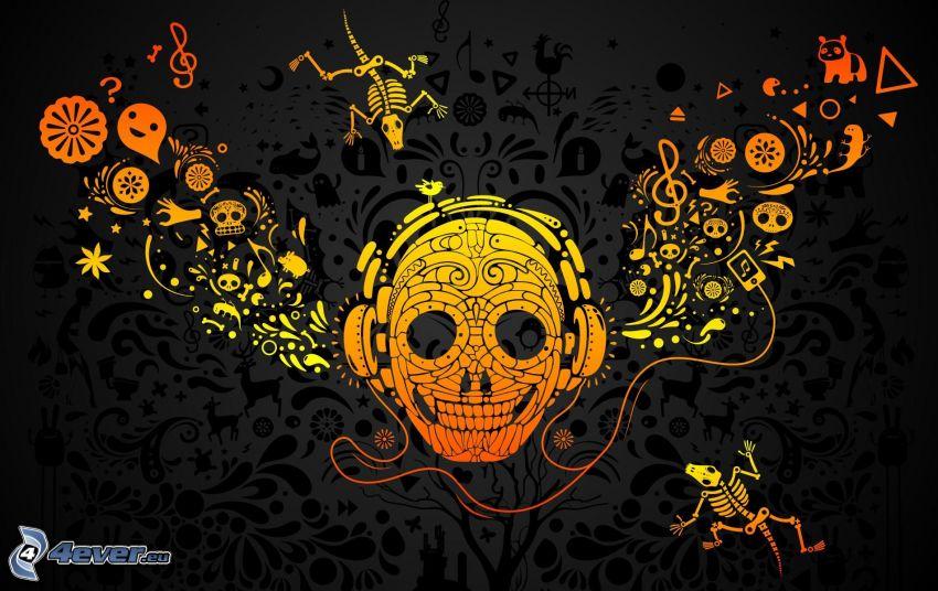 cráneo, esqueletos