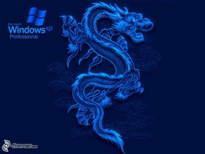 dragón azul, Windows XP, fondo