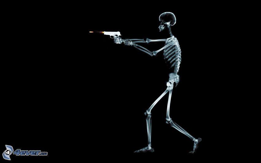 esqueleto, arma