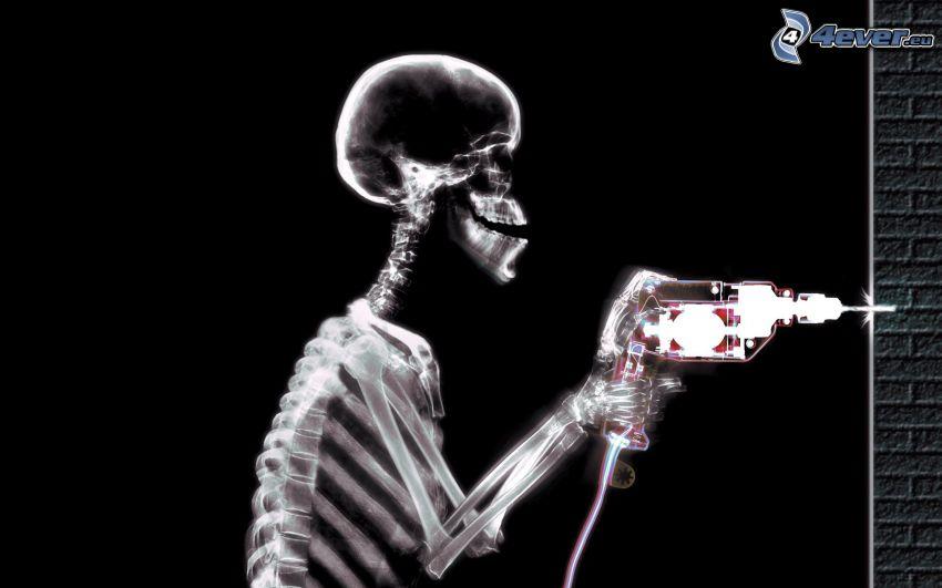 esqueleto, taladro