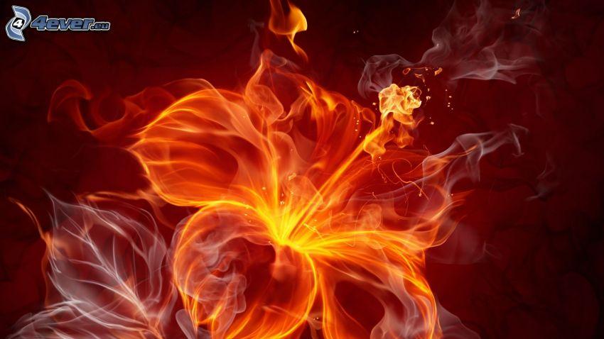 flor, fuego, humo