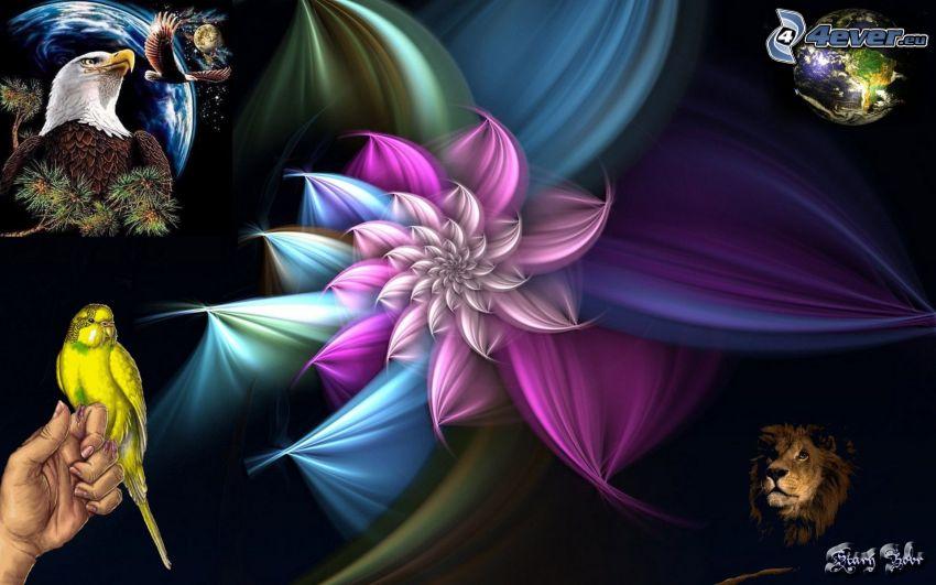 flor de varios colores, collage, águila, loro, león, Tierra