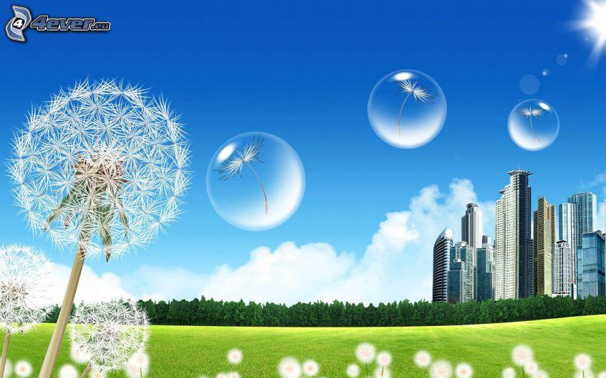 florecimiento de dientes de león, burbujas, semillas de diente de león, rascacielos