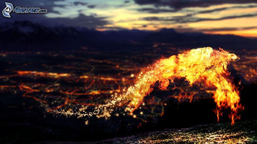 fuego, ciudad de noche