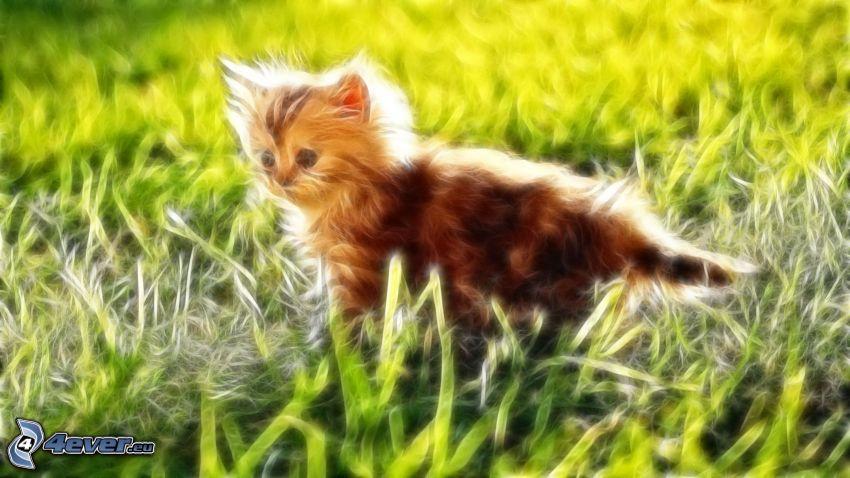 gato fractal, gato en la hierba, gatito peludo
