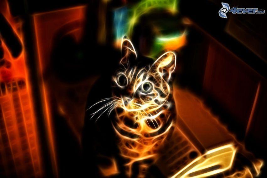 gato fractal, mirada