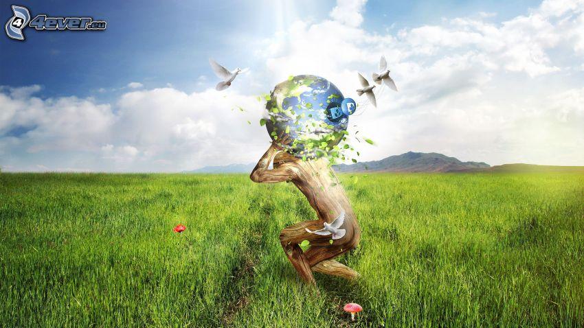 hombre, Planeta Tierra, palomas, prado, hierba, seta, amapola