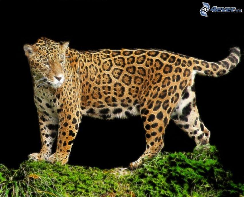 jaguar, animales de Fractal