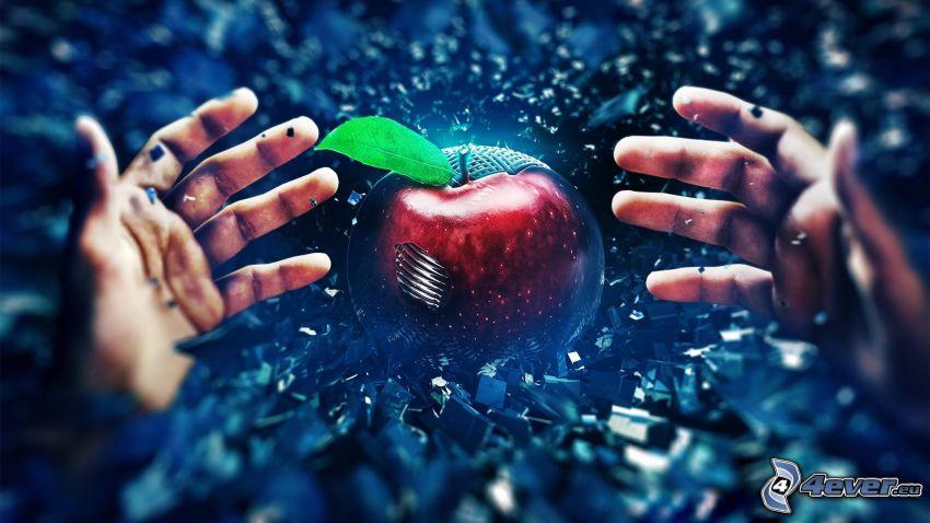 manos, manzana roja