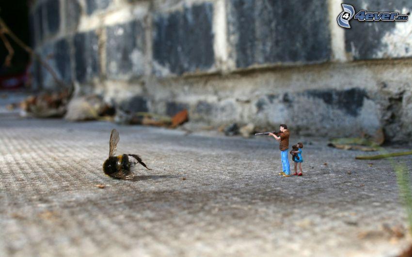 mosca, caracteres, macro