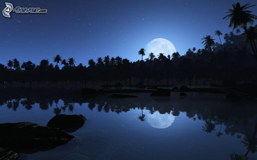 paisaje nocturno, lago, reflejo, mes, cielo estrellado