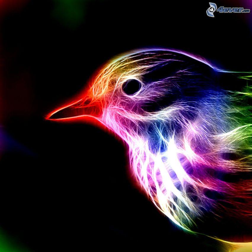 pájaro fractal, animales de Fractal