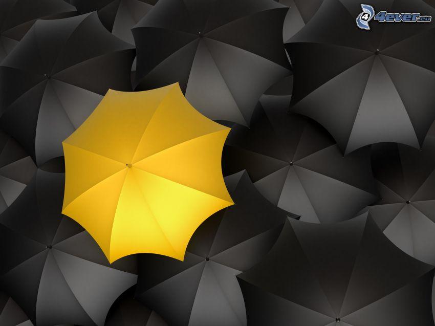 Paraguases