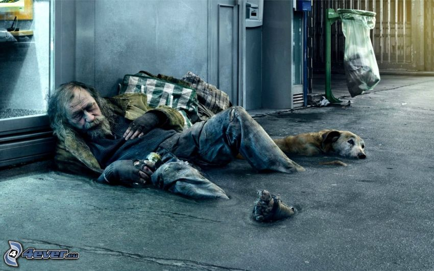 persona sin hogar, perro, papelera