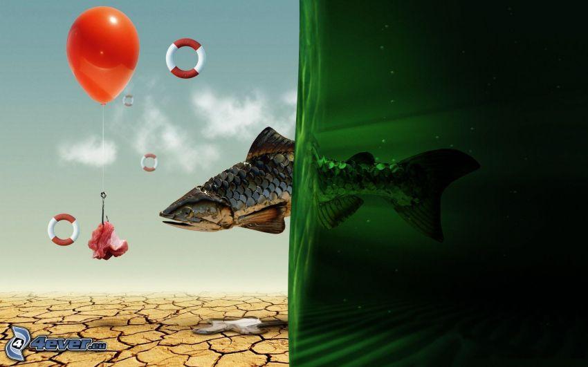 pez, globo, alimento, rueda flotante