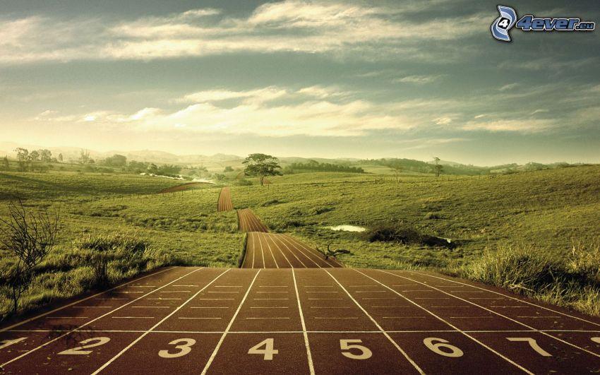 pista de jogging, prado