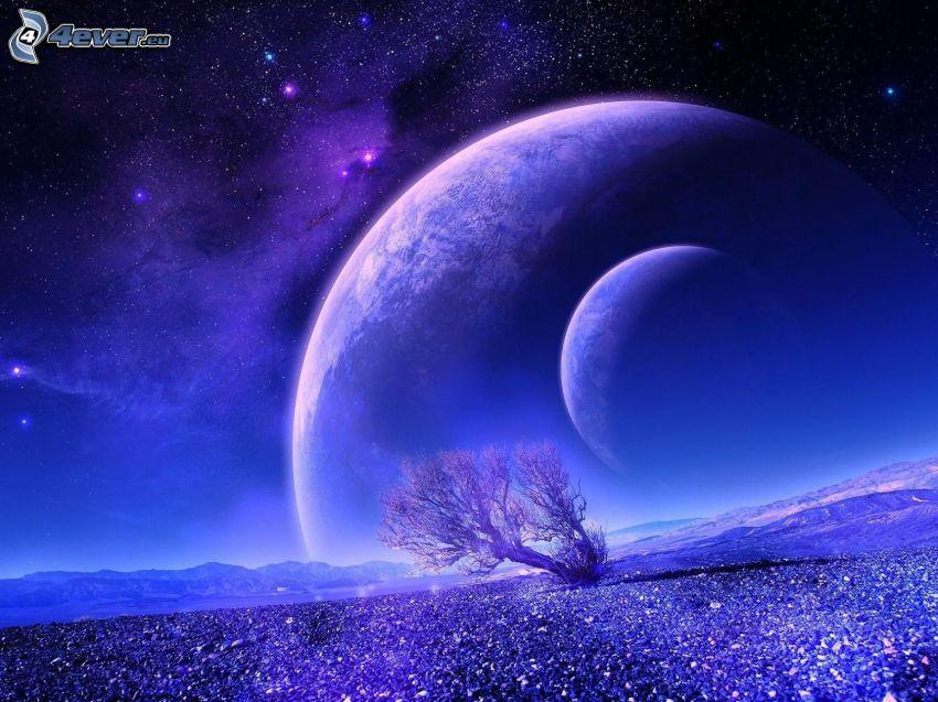 planetas, árbol solitario, cielo estrellado
