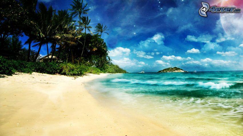 playa de arena, palmeras en la playa, mar