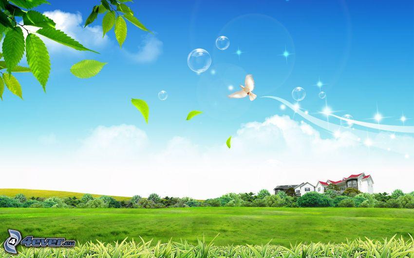 prado, árboles, casa, paloma, burbujas