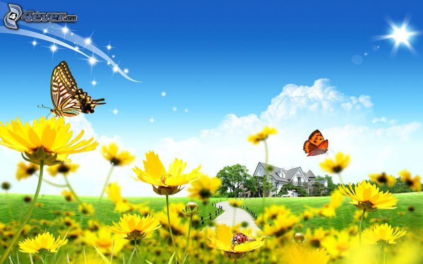 prado de verano, mariposa, cielo, casa moderna, camino