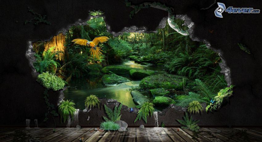 selva, Guacamayo Ara, agujero, verde, corriente que pasa por un bosque