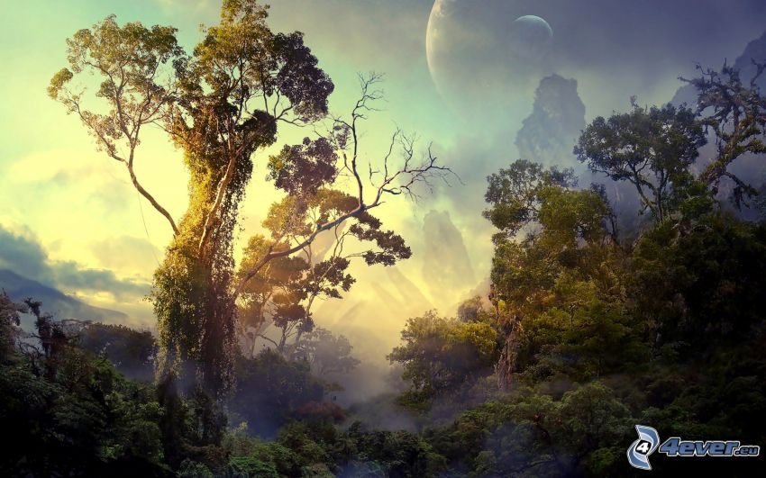 selva tropical, selva, árboles, planetas, ciencia ficción