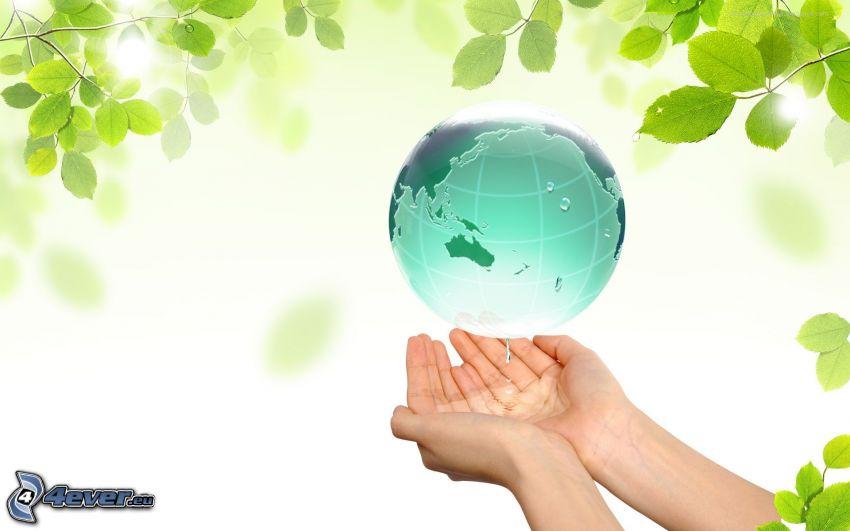 Tierra, manos, hojas