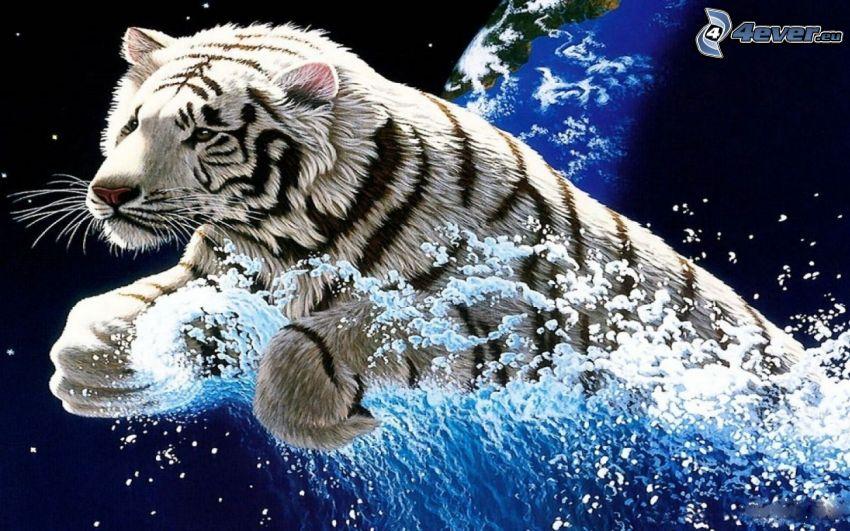 tigre blanco, agua, gotas