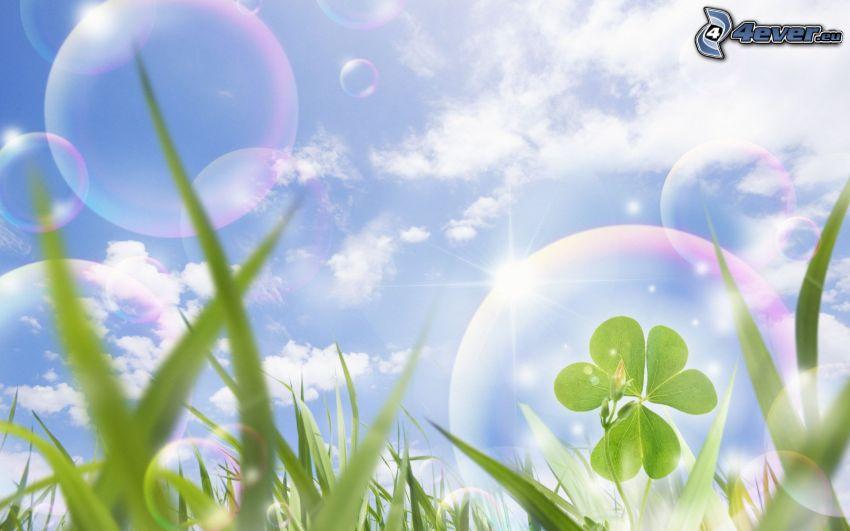 trébol, burbujas, paja de hierba