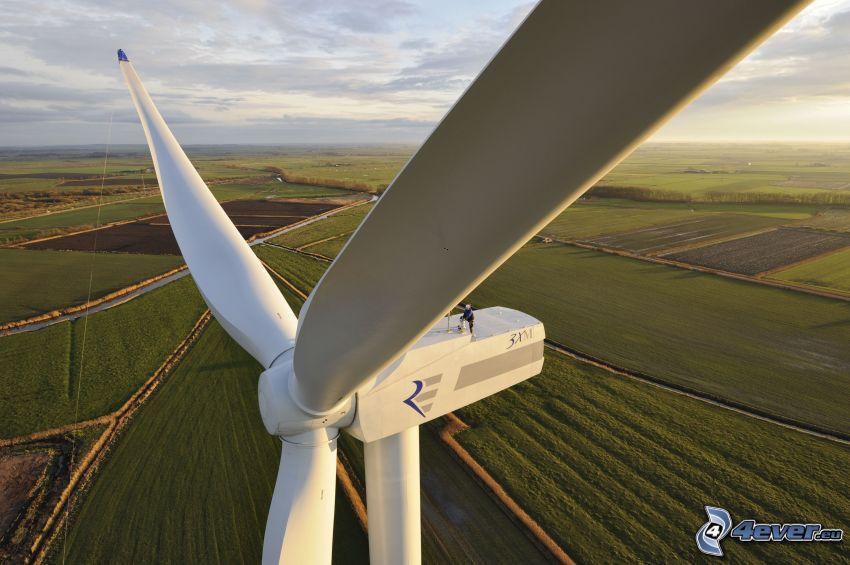 energía eólica, campos