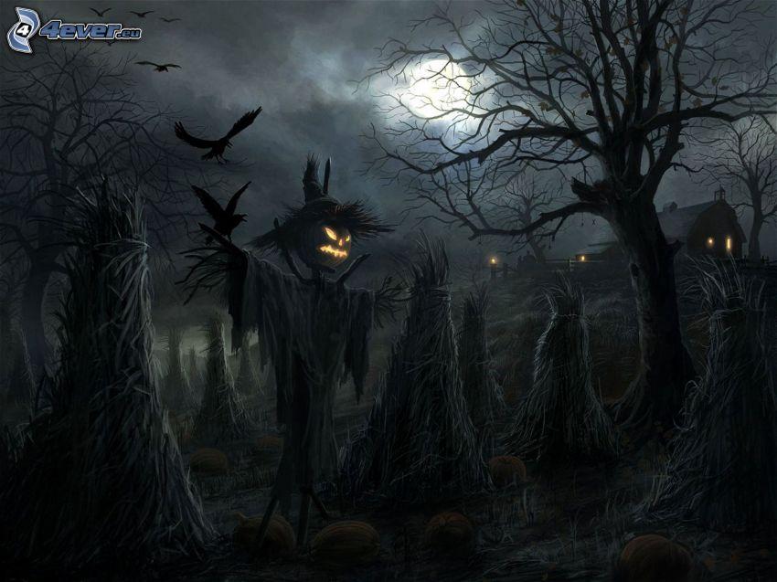 espantapájaros, Calabaza de Halloween, noche, corneja