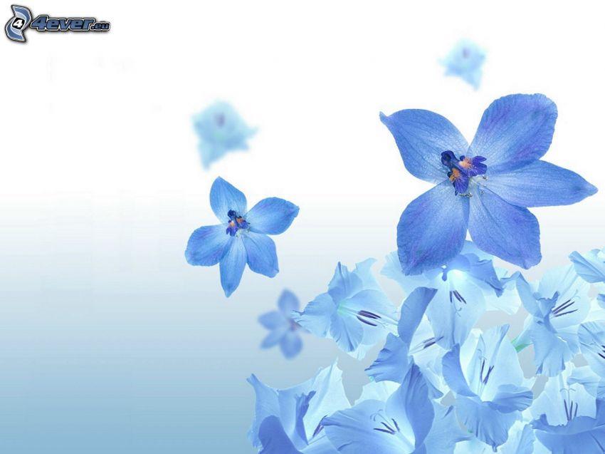 flores de color azul