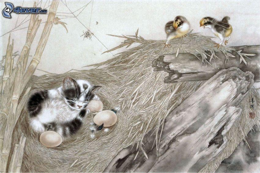 gatito durmiendo, nido, huevos, aves