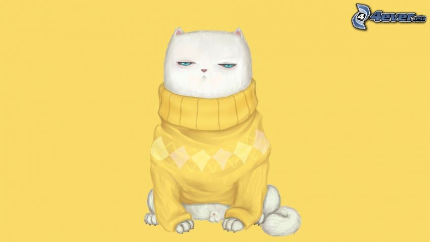 gato blanco, suéter, fondo amarillo
