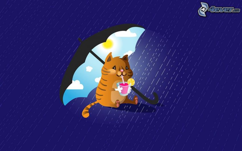 gato de la historieta, drink, paraguas, sol, lluvia